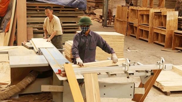 有效管理投入木材业的外资项目 hinh anh 1