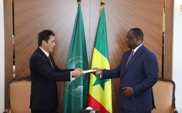 塞内加尔希望加强与越南在各领域合作 hinh anh 1