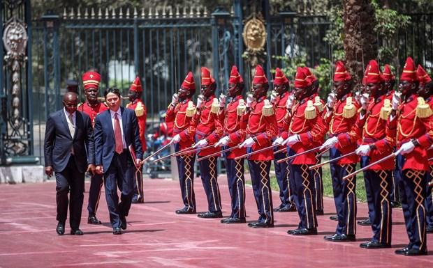 塞内加尔希望加强与越南在各领域合作 hinh anh 2