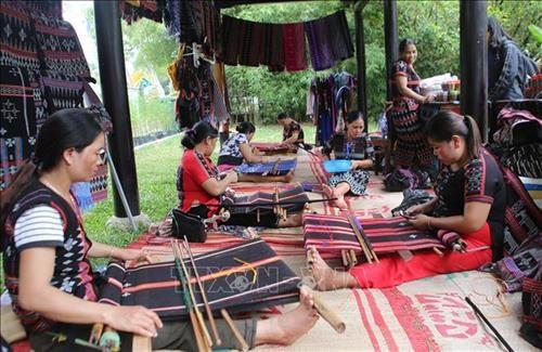提高达渥族传统土锦纺织业的价值 hinh anh 1