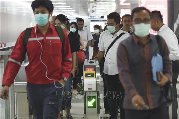 新冠肺炎疫情:柬埔寨采用快速检测方法 hinh anh 1