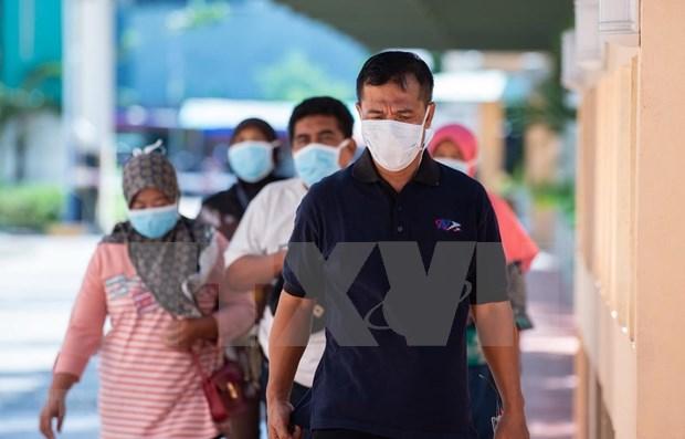 新冠肺炎疫情:印尼禁止出口医用口罩 hinh anh 1
