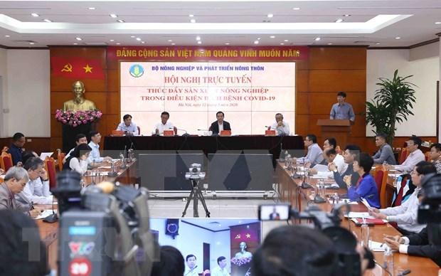 阮春强部长:促进农业生产确保满足国内市场和出口的需求 hinh anh 1