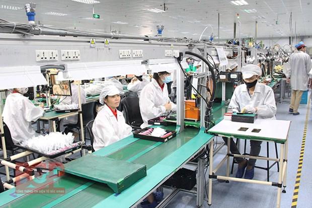 北江省力争实现2020年引进投资总额达10亿美元的目标 hinh anh 1