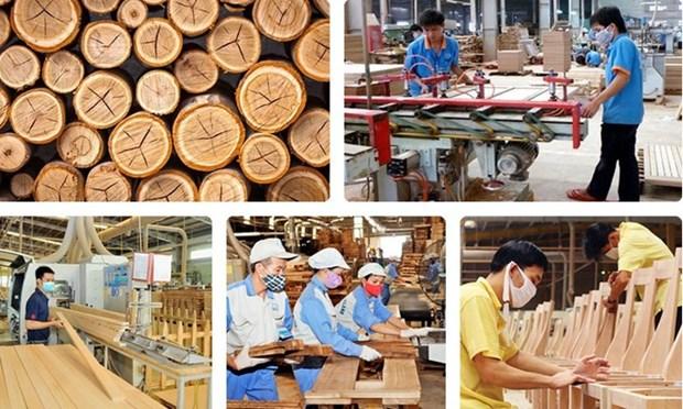木材和木制品行业: 以促进贸易为核心 hinh anh 1