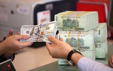 美联储降息 越南国内黄金和美元一律涨价 hinh anh 2