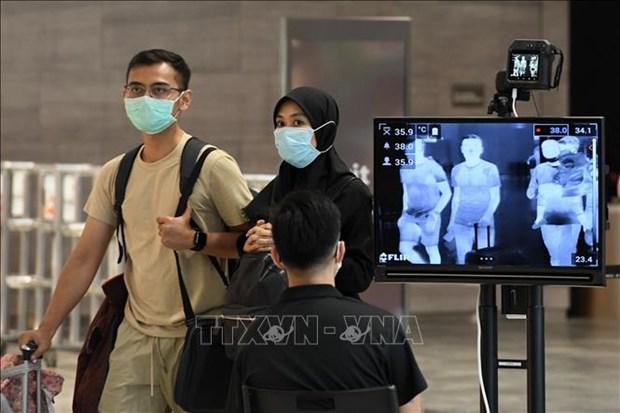 新冠肺炎疫情:新加坡加强入境管控 hinh anh 1