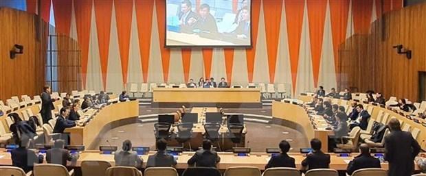 俄罗斯专家高度评价越南与俄罗斯在联合国的配合机制 hinh anh 1