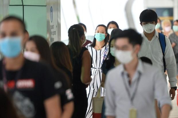 新冠肺炎疫情:东南亚各国努力应对疫情 hinh anh 1
