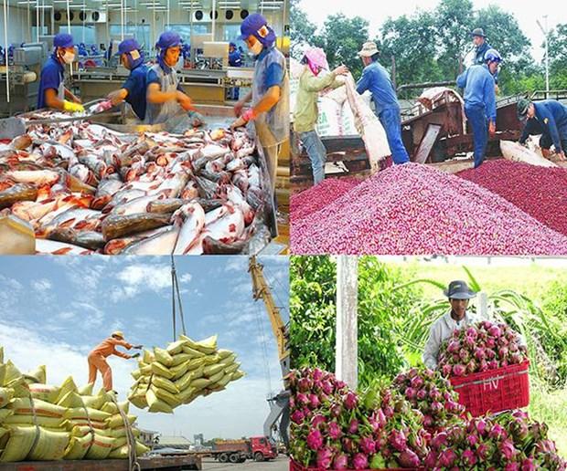 EVFTA: 为越南农产品拓宽市场 hinh anh 1