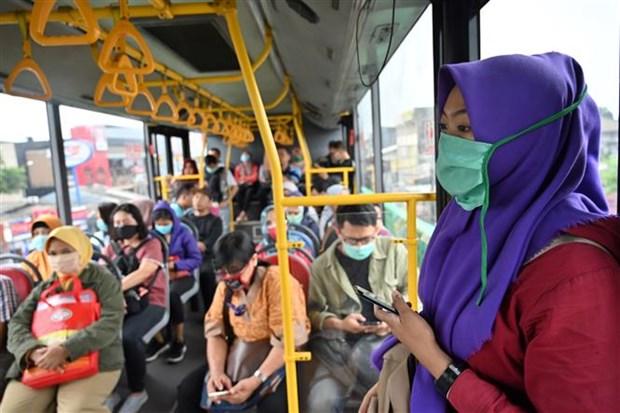 印度尼西亚暂时关闭与马来西亚砂拉越州的陆地边界 hinh anh 1