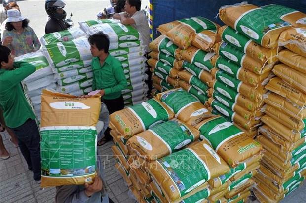 新冠肺炎疫情:供应增加柬埔寨大米价格稳定 hinh anh 1