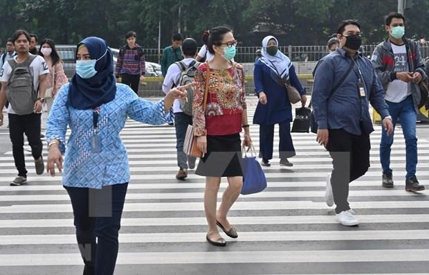 新冠肺炎疫情:东帝汶发现首例新冠肺炎病例 印尼和菲律宾感染人数快速增加 hinh anh 1