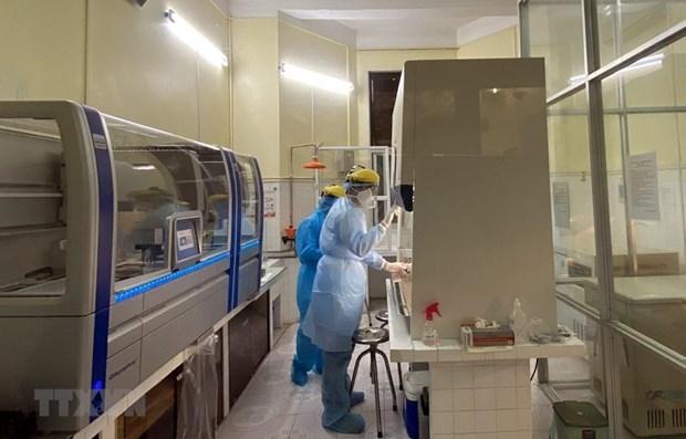 越南新冠肺炎病例累计达113例 hinh anh 1