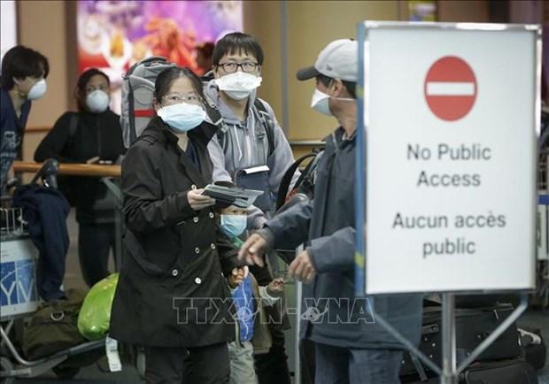 新冠肺炎疫情:越南驻加拿大大使馆呼吁公民采取安全措施 hinh anh 1