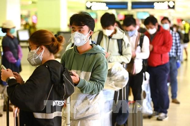 新冠肺炎疫情:越南驻各国大使馆建议公民保持冷静并主动采取防疫措施 hinh anh 1