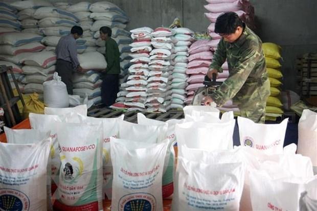 越南多措并举确保国内粮食供应和满足出口需求 hinh anh 1