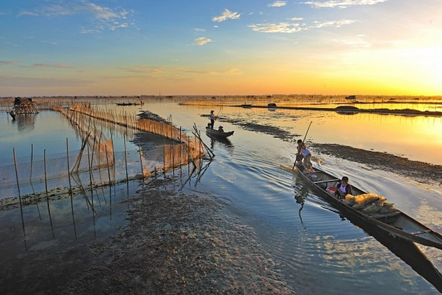 沉浸在三江泻湖黎明的美丽中 了解渔民的生活 hinh anh 2