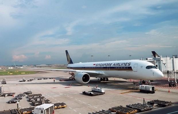受新冠肺炎疫情影响新加坡航空将停飞96%航班 hinh anh 1