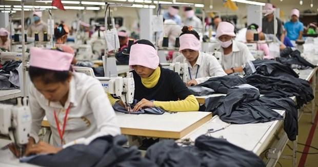 柬埔寨多家纺织厂暂时停工 3万名纺织工人面临财务困难 hinh anh 1