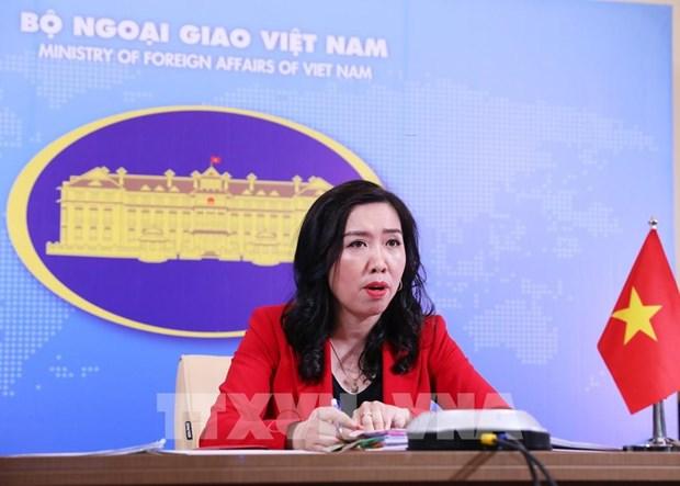 越南对国家粮食安全保障和大米出口给予高度重视 hinh anh 1