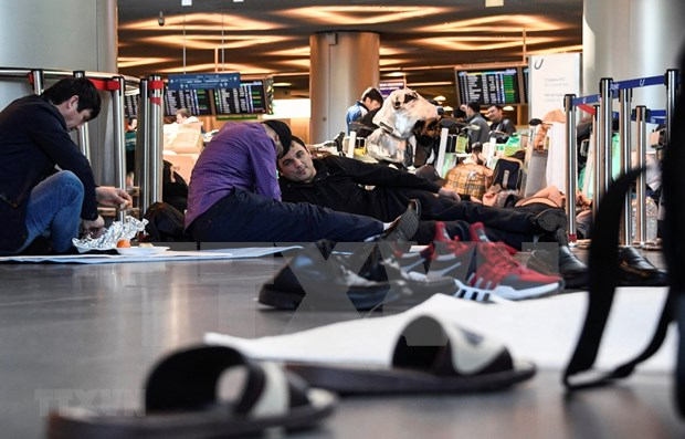 将滞留在莫斯科国际机场的越南公民送回国 hinh anh 1