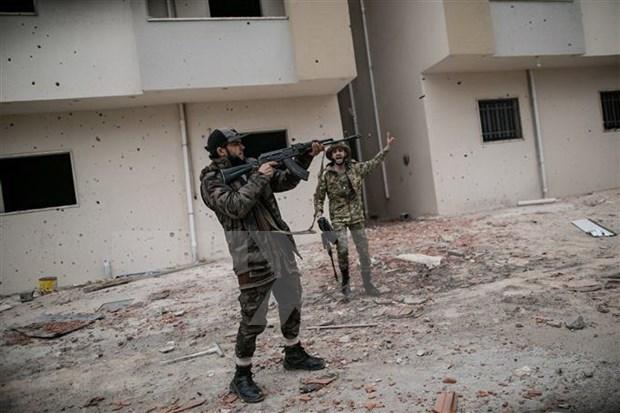 越南呼吁有关各方遵守利比亚停火协议 hinh anh 1