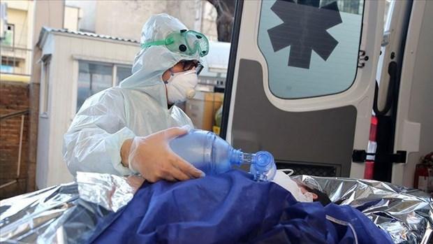 新冠肺炎疫情:越南驻外大使馆给予旅外越南公民及时帮助要求严格遵守防疫规定 hinh anh 2