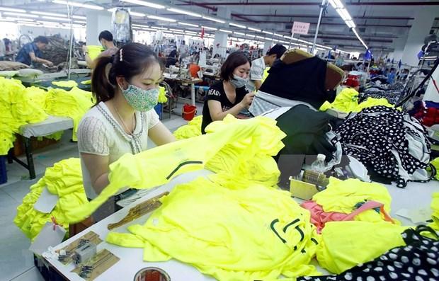 2020年第一季度越南与欧盟进出口前景处于黯淡期 hinh anh 1