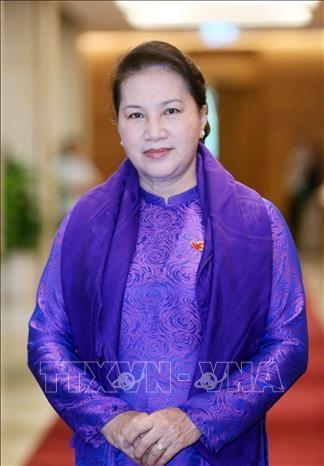 越南国会主席阮氏金银:共同携手保护东盟共同家园 hinh anh 1