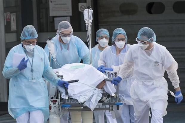 印尼和新加坡等国家提出联合国大会关于新冠肺炎疫情的决议草案 hinh anh 1