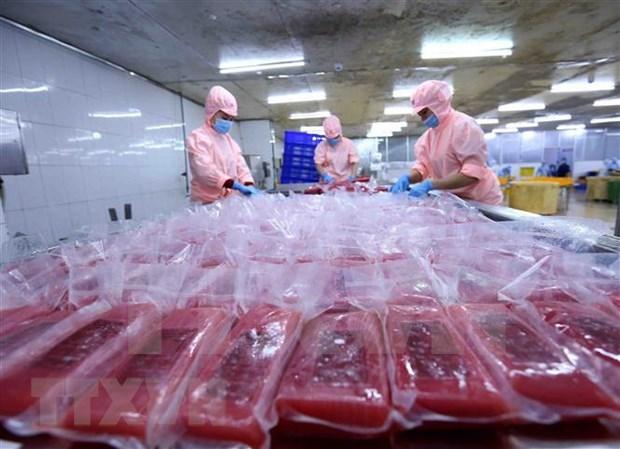 2020年前两月越南与以色列双边贸易额达逾2.36亿美元 hinh anh 1