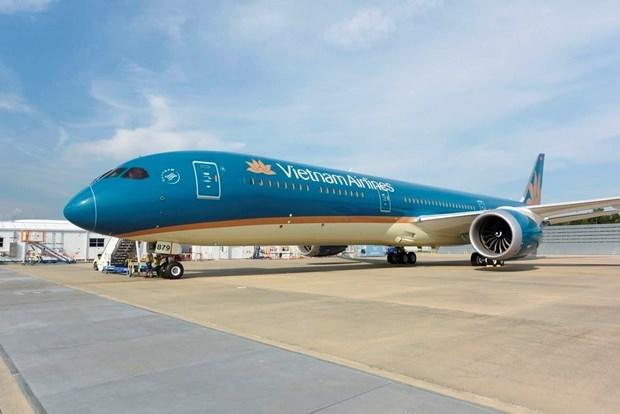 自4月1日0时起各家航空公司暂停飞往越南的客运服务 hinh anh 1