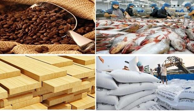今年第一季度越南农林水产品贸易顺差增长近49% hinh anh 1
