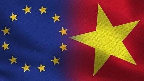 面向《越欧自贸协定》生效的重要步骤 hinh anh 1