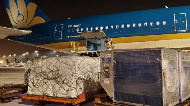 航空向货运转化 为贸易往来提供保障 hinh anh 1