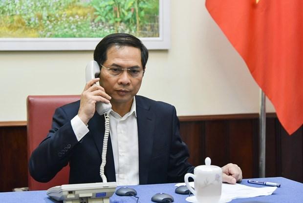 越南与各伙伴互换新冠肺炎疫情防控经验 hinh anh 1