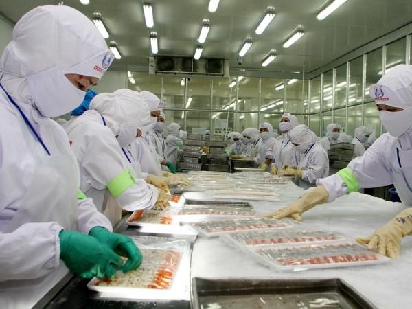 坚江省第一季度出口额增长32%以上 hinh anh 1