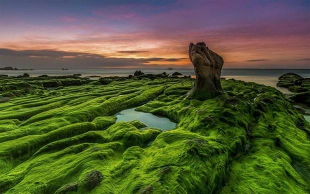 越南摄影家的作品在国际摄影大赛上荣获金奖 hinh anh 2