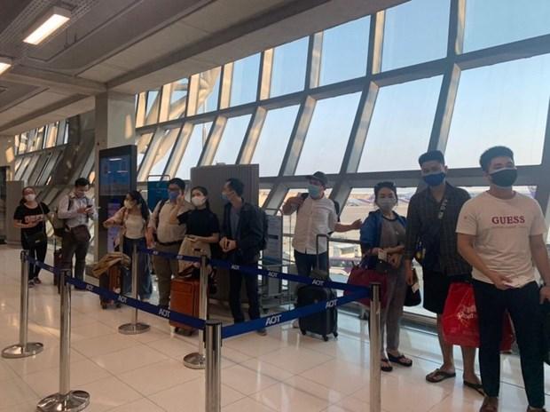 越南驻泰国大使馆努力将在素万那普国际机场滞留的公民运送回国 hinh anh 1