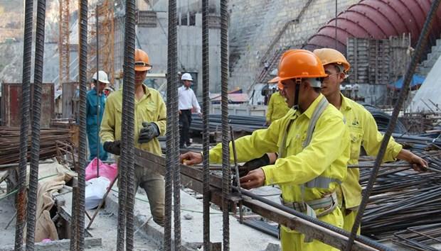 2020年第二季度越南建筑企业的劳动力需求继续下降 hinh anh 1