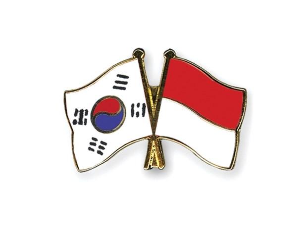 韩国与印尼一致同意尽早签订CEPA hinh anh 1