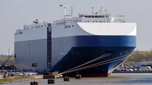 海防港就TIANJIN HIGHWAY号滚装集装箱船卸船方案召开紧急会议 hinh anh 2