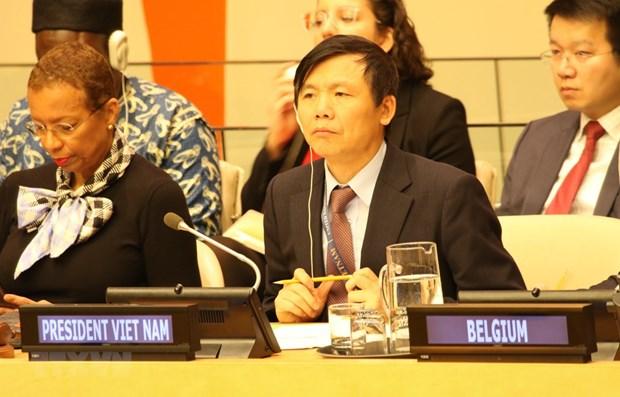 越南呼吁国际社会有关各方确保马里人民的安全 hinh anh 1