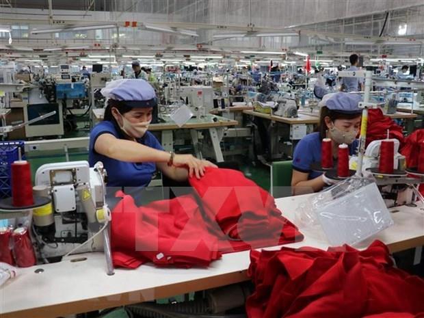 德国企业期望中期间越南经济得到恢复 hinh anh 1