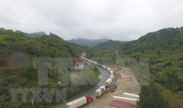 新冠肺炎疫情:中国强化口岸管控 越南对华出口影响严重 hinh anh 1