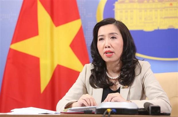 越南努力解决在海外的越南公民回国的需求 hinh anh 1