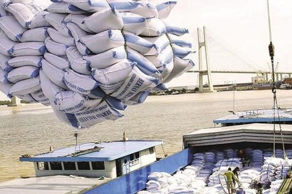 越南政府总理批准恢复大米出口活动 hinh anh 1