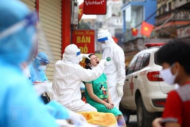 12日早晨越南无新增新冠肺炎确诊病例 累计确诊病例258例 hinh anh 1