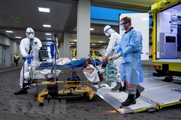 一名越裔德国人因新冠肺炎死亡 hinh anh 1